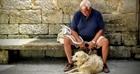 Australia: Thú cưng giúp giảm tỉ lệ tự tử ở người già