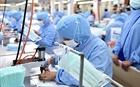 Bộ Công Thương khuyến cáo chất lượng khẩu trang xuất khẩu