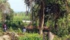 Kỷ luật ba cán bộ Khu bảo tồn thiên nhiên văn hóa Đồng Nai