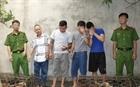 Ổ nhóm trộm chó chuyên nghiệp sử dụng vũ khí nóng