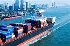 Xuất khẩu đầu năm với nhiều tín hiệu khả quan